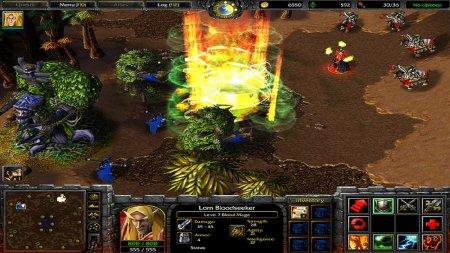 Warcraft 3 Frozen Throne скачать торрент