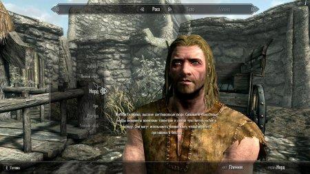 Skyrim Special Edition скачать торрент