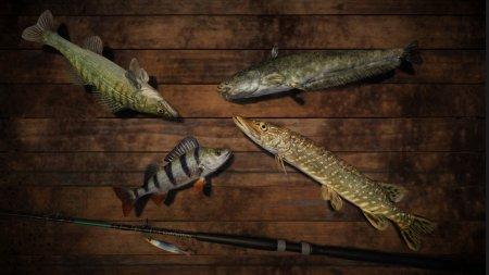 PRO FISHING (2018) скачать торрент