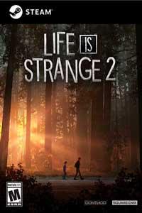 Life is Strange 2 все эпизоды 1 - 5 скачать торрент