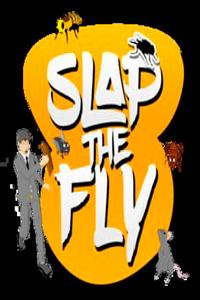 Slap The Fly скачать торрент