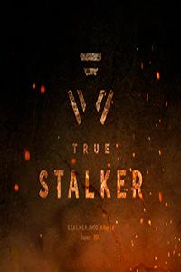 True Stalker Настоящий Сталкер скачать торрент