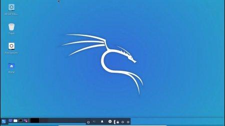 Kali Linux скачать торрент