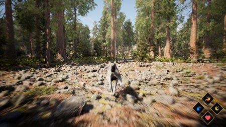 Wilderness скачать торрент
